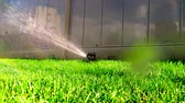 rendszer : Oscillating lawn sprinkler watering grass in backyard automatic irrigation system Stock mozgókép