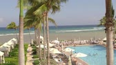 yüzme havuzu : Tropical beach resort Saint James Parish Montego Bay Jamaica