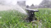 rendszer : Garden automatic irrigation system watering lawn