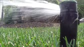automat : Automatic irrigation system watering lawn