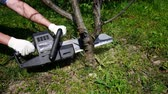 lenha : Cut down of tree by electric saw Stock Footage