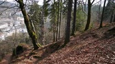 Panoramic view of autumn forest near Carlsbad (Karlovy Vary) Czech Republic Stock Footage