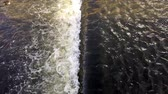duck : Raging river slow motion Stock Footage