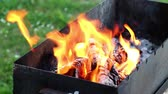 огонь : Burning wood in fire on grill place
