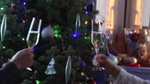 уютный : Couple toasting glasses with white champagne wine by decorated illuminated Christmas tree Стоковые видеозаписи