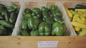 repolho : cucumbers, squash, cabbage and green peppers at roadside produce market