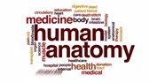 doku : Human anatomy animated word cloud, text design animation.