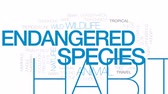 жаба : Endangered species animated word cloud, text design animation. Kinetic typography.