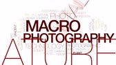 macro fotografia : Macro photography animated word cloud, text design animation. Kinetic typography. Stock Footage