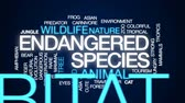 bear habitat : Endangered species animated word cloud, text design animation.