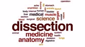 anatomisch : Dissection animierte Wortwolke, Textdesignanimation. Stock Footage