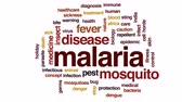 infecção : Malaria animated word cloud, text design animation. Stock Footage