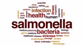 осмотр : Salmonella animated word cloud, text design animation.