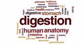 barriga : Digestion animated word cloud, text design animation. Stock Footage