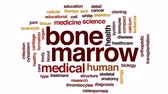 thrombocytes : Bone marrow animated word cloud, text design animation.