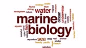 Marine biology animated word cloud, text design animation.