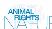 bem estar : Animal rights animated word cloud, text design animation. Kinetic typography. Stock Footage