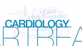 ekg : Cardiology animated word cloud, text design animation. Kinetic typography. Stock Footage
