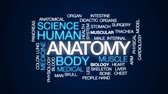 anatomia : Anatomy animated word cloud, text design animation. Stock Footage