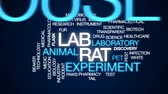мерный стакан : Lab rat animated word cloud, text design animation. Стоковые видеозаписи