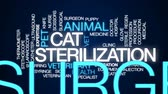 surgical scissors : Cat sterilization animated word cloud, text design animation. Stock Footage