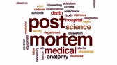 morte : Post mortem animated word cloud, text design animation.