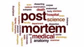 tělo : Post mortem animated word cloud, text design animation.