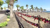 Love Locks and Palm trees blowing on a beach on a windy day close to the sand and coastal area, taken in Lanzarote one of the Canary islands off the coast of West Africa, Spain 動画素材