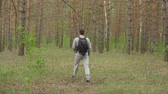 пеший турист : young man with a backpack walks through the forest. View from the back. Стоковые видеозаписи