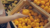 mercearia : Young woman at the grocery store chooses fruit. Stock Footage