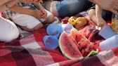 kruvasan : red blanket with cut water melon plastic glasses and fresh juice prepared for family picnic close upper view slow motion Stok Video