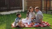 happy little boys enjoy picnic with mother father laughing on bright red blanket on lawn in summer close slow motion Wideo