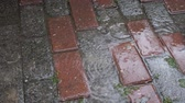 스코틀랜드 : Raindrops falling down on paving stones, close-up
