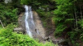 fresco : Tranquil waterfall scenery in the middle of forest. Carpathian, Ukraine. HD video (High Definition) Stock Footage