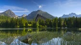 flora : Time lapse clip. Mountain lake in National Park High Tatra. Strbske pleso, Slovakia, Europe. HD video (High Definition)