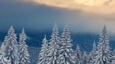 snowfall : Majestic sunset in the mountains landscape. Carpathian, Ukraine. Time lapse, stop-motion clip. HD video (High Definition) Stock Footage