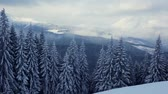 ukrajina : Beautiful winter landscape with snow covered trees. Carpathian, Ukraine. HD video (High Definition)