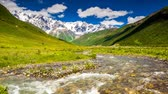 flora : Time lapse clip. River in mountain valley at the foot of  Mt. Shkhara. Upper Svaneti, Georgia, Europe. Caucasus mountains. Beauty world. HD video (High Definition)