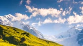 flora : Time lapse clip. Alpine meadows at the foot of Tetnuldi glacier. Upper Svaneti, Georgia, Europe. Caucasus mountains. Beauty world. HD video (High Definition). Stock Footage