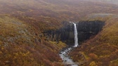 basalto : view of Svartifoss basalt waterfall handheld 1080 Stock Footage