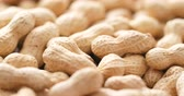 amendoins : Roasted Peanuts