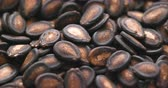 comida chinesa : Black Melon Seeds in rotation