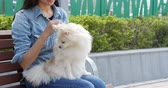 pomeranian spitz : Woman playing with her dog at park