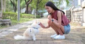 pomeranian spitz : Woman play with her dog at outdoor