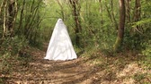 mitológico : Druid in white cloak passing through the forest.