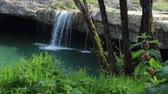 hydrology : Nature around the waterfall. Stock Footage