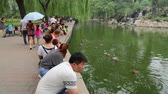 pekin : BEIJING - CIRCA JUNE, 2015: Beijing Zoo visitors stroll through the park. Beijing Zoo is basically wild and rare animals in China, territory zoo has the form of classical Chinese gardens.