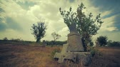 kamie�� : Tombstone and graves in an old cemetery Wideo