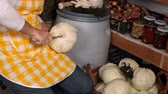 sauerkraut : Preparing whole sour or pickled cabbage in the pantry - cutting the core, closeup Stock Footage