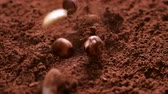 rozinky : Raisins, almonds and hazelnuts fall into cocoa powder stirring up clouds of the delicious chocolate ingredient - close up, slow motion, camera slide